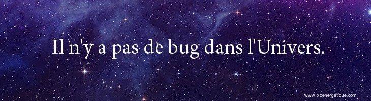 Bioenergetique, loi d'attraction, il n'y a pas de bug dans l'univers